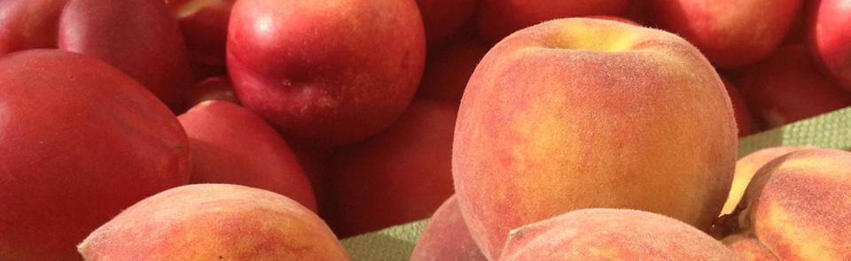 GoFruit Stone Fruit