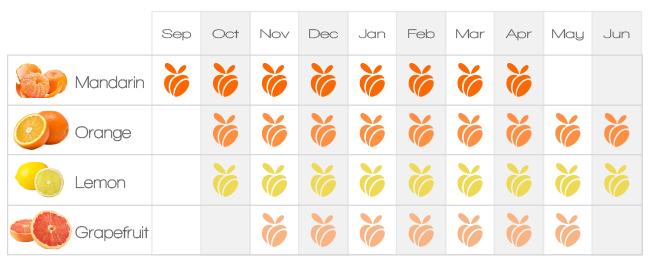 GoFruit Citrus